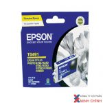 Mực in Epson T0491 – chuyên dùng cho máy in R230, R210